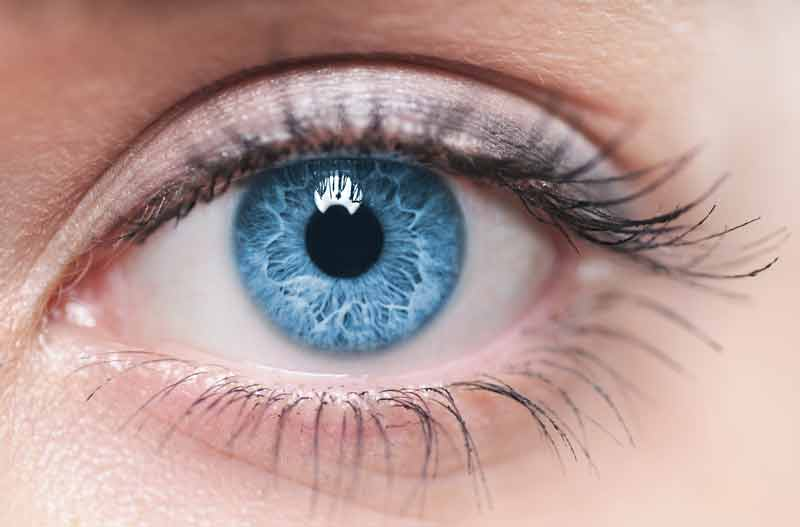 Amazing and interesting facts about human eye